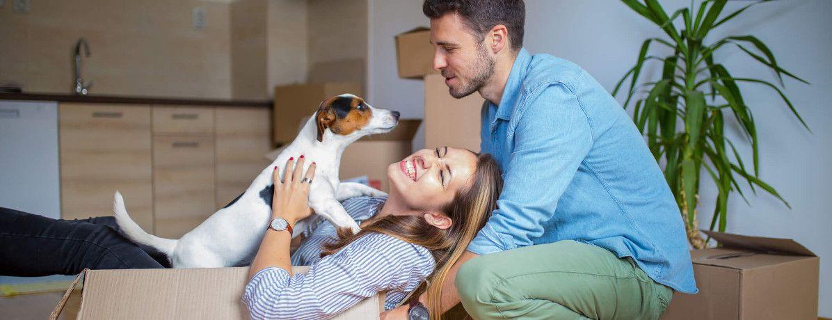 Animais em Condomínio: O que pode e o que não pode?